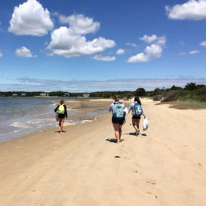 Cape Cod Beach Volunteers