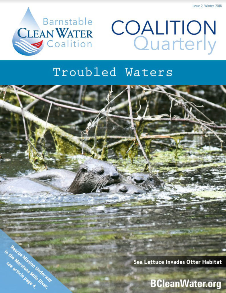 Barnstable Clean Water Coalition Newsletter