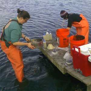 2 workers - Water Quality Sampling