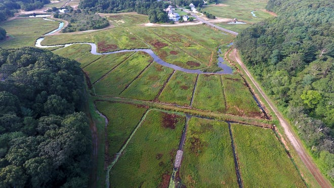 An aerial view shows the Barnstable Clean Water Coalition's setup in a cranberry bog drainage ditch that uses a bioreactor to remove nutrients from water headed toward the Marstons Mills River, seen at top. Steve Heaslip/Cape Cod Times